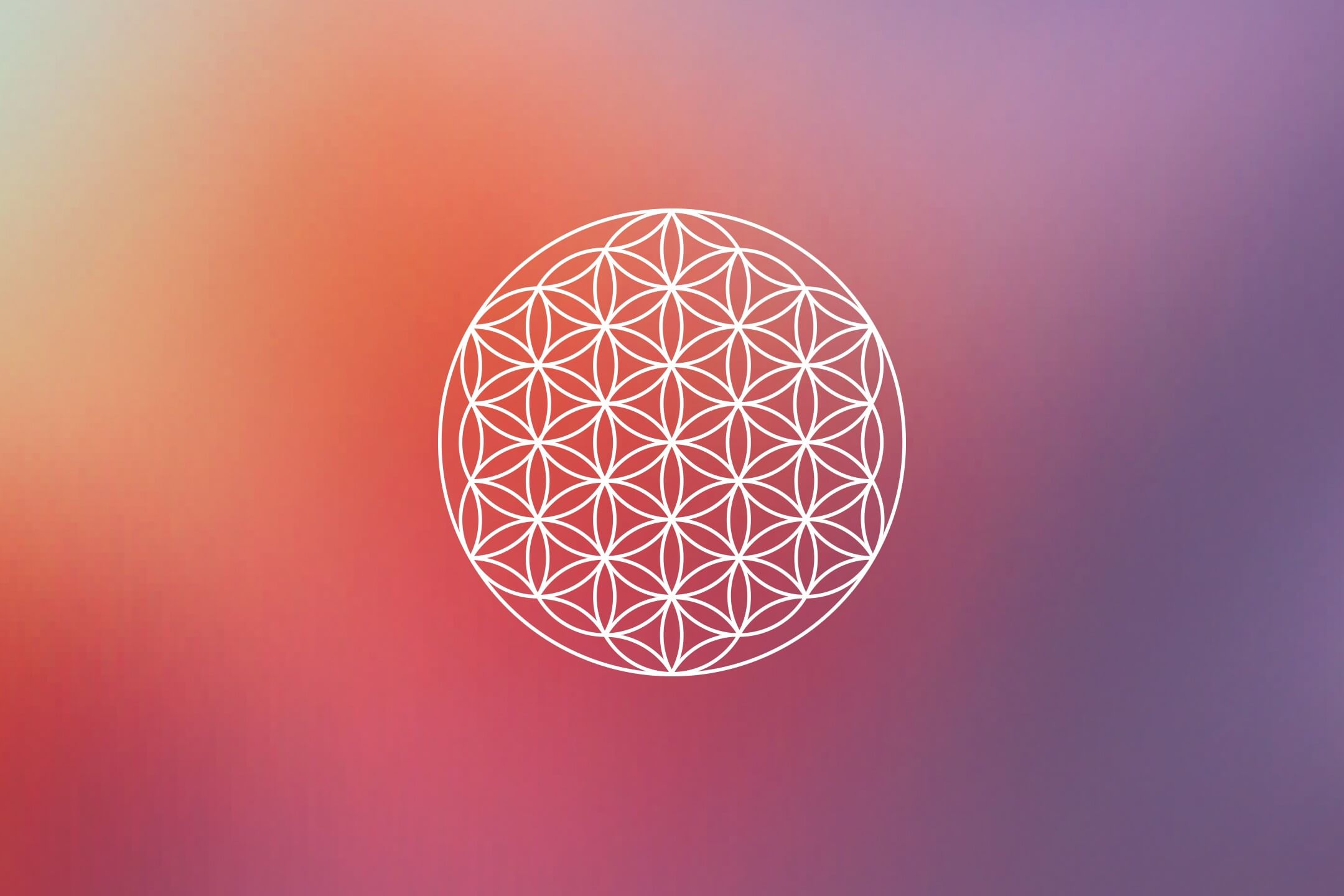 numerology flower of life
