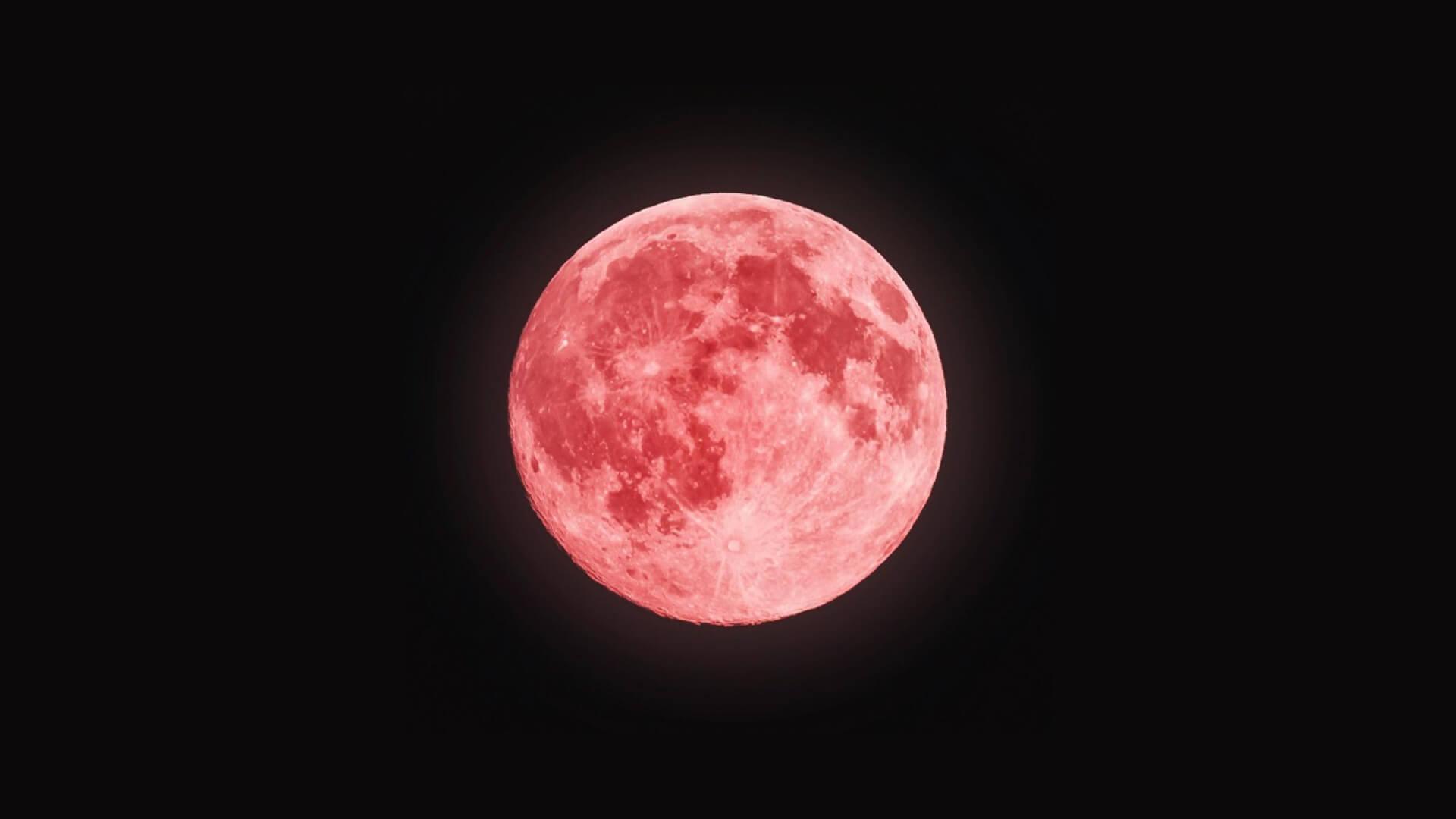 pink super full moon